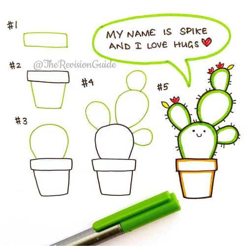 doodle a cacti in your bullet journal