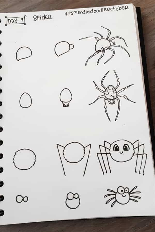 Cute and realistic spider doodles!
