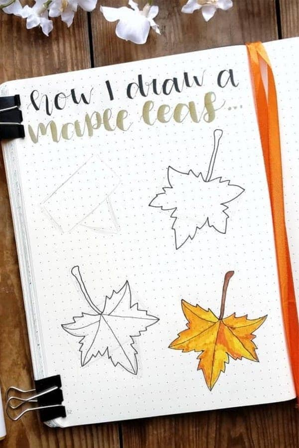 How to draw Canadian Maple Leaves