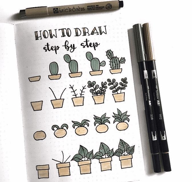 succulent doodle idea