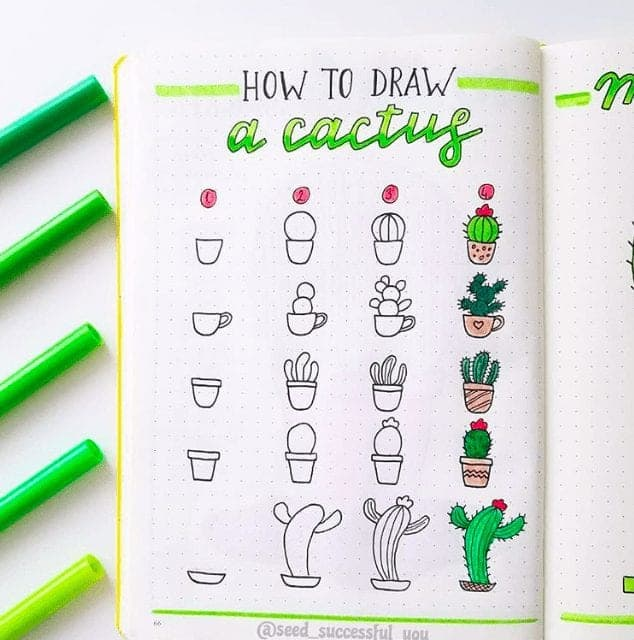 How to draw a cactus in your bullet journal!
