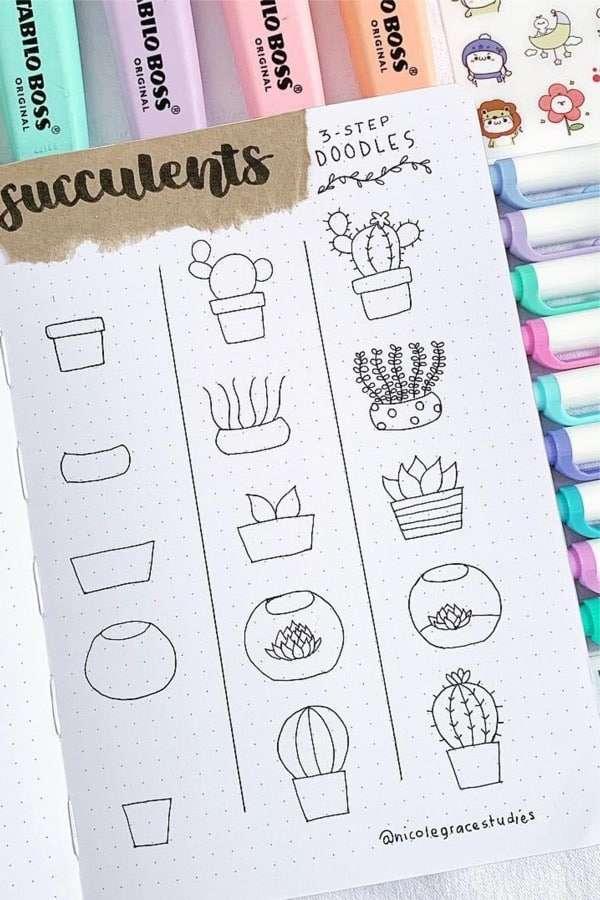 cactus and succulent bullet journal doodles